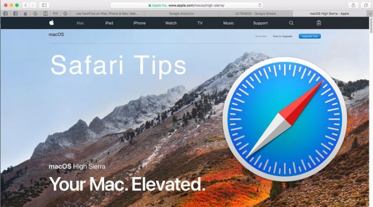 Safari Browser, home page.